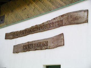 Beschriftete Holz-baumstamm-Tafeln